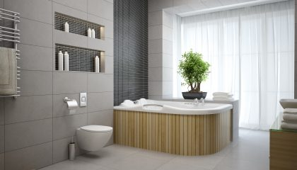 Affordable Bathroom Ideas